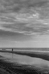 On the Beach (derScheuch) Tags: sunset bw white black film beach water strand analog 35mm germany geotagged deutschland 50mm sonnenuntergang minolta kodak tide trix himmel analogue rodinal sylt xd7 xd11 schwarz 125 ebbe westerland weis geo:lat=54903604027278746 geo:lon=829544382537847