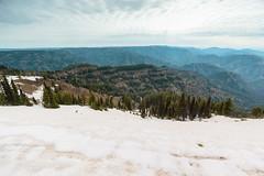 View from Oregon Butte (Matthew Singer) Tags: washington bluemountains backpacking wenahatucannonwilderness umatillanationalforest