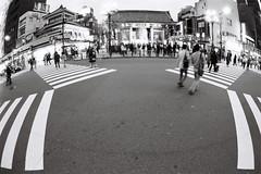 Asakusa (M_NGN) Tags: street bw slr film tokyo nb fisheye asakusa nikonf3 2012 kodaktrix400 24x36 16mmf28