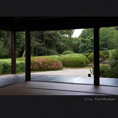 (Eiji Murakami) Tags: summer japan sony   nara   nex7