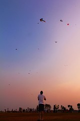 """Imagination is the highest kite one can fly"" (...Sathiya) Tags: pink blue trees red sky people orange white kite tree grass silhouette yellow standing landscape stand flying singapore blu tshirt kites marinabarrage"