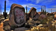 Cat on the rock (flowerikka) Tags: cactus sky rock clouds cat mexico sand desert bluesky bajacalifornia