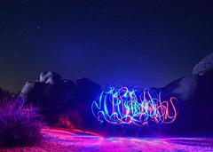 Light Ribbons (Susan Colosimo) Tags: lightpainting stars joshuatree paintingwithlight mojavedesert darksky joshuatreenationalpark coloradodesert starrysky desertecosystem lightribbons