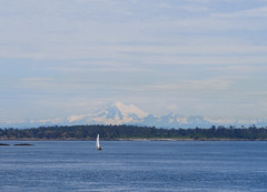 Mt. Baker was out (peter.a.klein (Boulanger-Croissant)) Tags: canada sailboat bc view britishcolumbia victoria vista mtbaker oakbay