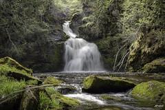 Gairloch Mountain Falls (Rob Romard) Tags: mountain waterfall moss spring falls capebreton gairloch middleriver