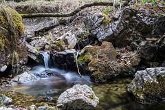 A Small Stream (Vladi Stoimenov) Tags: longexposure green nature water germany nice nikon filter nikkor vladi ndfilter d610 nikonlens 24120mmf4 vladistoimenov