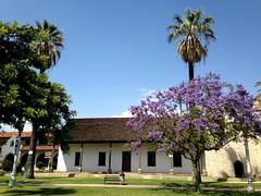 L.A. (dave87912) Tags: california blue summer sky green palms losangeles spring cool sunny sangabriel socal mission jacaranda 626 sgv