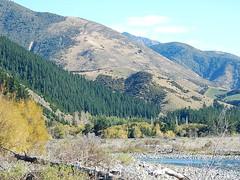 South Island Hues (mikecogh) Tags: nature forest river countryside stones shades hues raglan bushes slopes