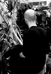 orto botanico di Padova - marzo 2016 (enricoerriko) Tags: enricoerriko padova veneto enrico erriko piante verde green foglie fiori facebookflickrcom comcomunecivitanovamarchemcit sanmarone civitanovamarche sunshine sunset google altavista web sunrise sun moon earth globe grass piazzaxxsettembre lidocluana casadelpopolo murales