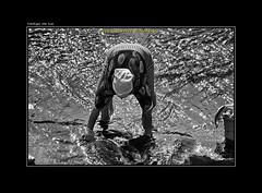 """LAVANDO EN EL RIO (CODIGO DE LUZ """"El Fotgrafo"""") Tags: blackandwhite bw byn blancoynegro rio monocromo mujer chaouen chefchaouen marruecos brancoepreto lavandera escenacotidiana pepegutierrez pgutierrez cdigodeluz elrif raselma lavandoenelro mujerchaouni"""