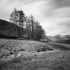 Borrowdale from Puddingstone Bank (Mark Rowell) Tags: uk longexposure bw 120 6x6 film mediumformat fuji lakedistrict hasselblad cumbria acros swc 903 borrowdale rosthwaite