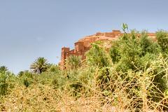 075 (Michael Williams Photography) Tags: atlasmountains morocco marrakech approved ouarzazate saharadesert atbenhaddou doorofthedesert siteofnumerousmovies exampleslawrenceofarabiajewelofthenilelasttempationofchristgladiatorusedinpartsofgameofthrones