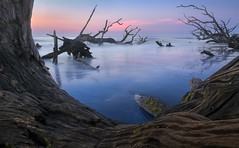 Misty Dawn Dreams on Driftwood Beach (Charles Opper [AWAY/BACK SOON]) Tags: light sky mist color reflection beach nature water clouds sunrise canon georgia landscape dawn coast seaside spring waves atmosphere driftwood shore dreamy jekyllisland