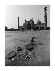 JamaMasjid 1  11 (gingerlymike2) Tags: india film nikon kodak trix f2 masjid jama f2a