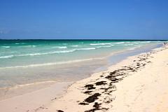 Cayo Coco 012 (BGS Fotografia) Tags: travel sunset sea sun sol beach beautiful clouds atardecer mar sand cuba playa arena viajes nubes caribe caribean cayococo