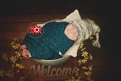 Sleepy Baby 4 weeks young (pfau_910) Tags: baby hat studio basket sweet small newborn newbornbaby newbornphotography newbornposing