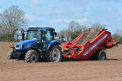 New Holland T6030 Tractor with a Grimme Rota Power CS150 Destoner (Shane Casey CK25) Tags: county new blue ireland horse irish plant tractor holland field set work pull potatoes hp nikon traktor power earth farm cork farming working cereal grow machine ground nh machinery soil dirt potato till crop crops growing farmer spuds agriculture dust setting cereals pulling contractor planting sow drill tracteur trator horsepower spud tilling drilling rota trekker sowing cnh agri newholland grimme tillage destoner cignik traktori ballyhooly d7100 cs150 casenewholland t6030