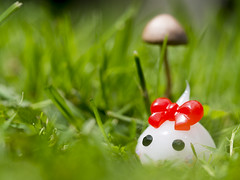 Hoppe's Adventure to FaeLand and the circle of toadstools... (Jam-Gloom) Tags: macro cute mushroom grass toy photography japanese olympus fungi fungus cheeks chan kawaii toadstool 60mm omd japanesetoy hoppe 60mmmacro 60mm28 toyphotography em5 toyography 60mmmacro28 toyfromjapan olympusomd olympusomdem5 hoppechan cheekschan