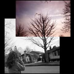 two perspectives (richelle forsey) Tags: analog ilfordhp5 fujifilm pointshoot pyrocathd epsonv750 nothingisordinary rolleiflexe2 exploreeverything twopovs thesheettree