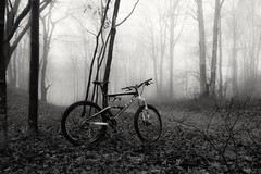 I'm gonna miss her when she is gone... (SaltyDogPhoto) Tags: trees winter blackandwhite bw mist mountain nature monochrome bike bicycle sport misty fog forest woods nikon ride exploring foggy mountainbike explore riding biking mtb gt nikkor bnw fullsuspension dense mountaintop lowvisibility nikonphotography nikkorafs1855 mtbtrail gtcycles nikond7200 gtzaskar100 saltydogphoto