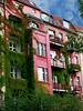 bewachsenes Haus (JuliSonne) Tags: street house berlin rot sommer pflanzen citylife himmel haus places architektur grün leben prenzlauerberg azur fassade wein häuser wohnen stadtleben bewachsen strase urbancity saniertbalkon