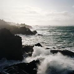 the thundering voice of the sea (manyfires) Tags: sea film beach oregon analog mediumformat square landscape coast rocks waves shoreline hasselblad pacificocean shore pacificnorthwest coastline hasselblad500cm shoreacres