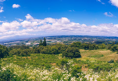 San Jose Hillside (andrewpabon) Tags: california ca panorama green nature cali clouds san jose bluesky hillside andrewpabon