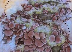 Hydrangea Detail (carlydrew) Tags: flower art drawing mixedmedia hydrangea carlydrew