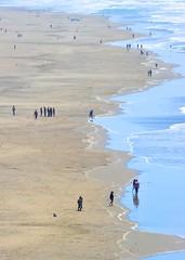 Along the Beach, Sutro Baths, #2 (andertho) Tags: ocean sf california deleteme5 deleteme8 color deleteme2 deleteme3 deleteme4 deleteme6 deleteme9 deleteme7 beach saveme4 waves saveme pacific saveme2 saveme3 deleteme10 richmond sfist deleteme1 d700