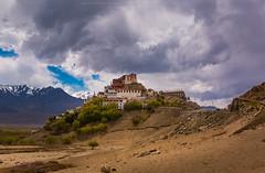 The Monastery (tonbluesman) Tags: india landscape leh ladakh