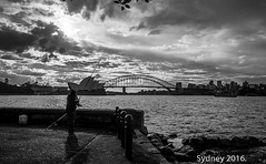 Sydney 2016. (Paul Babington Photography) Tags: sydney operahouse harbourbridge nikond750