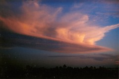 (stephenradcore) Tags: camera sunset film 35mm photography holga pinkclouds