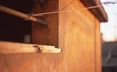 Tension ((Maris)) Tags: roma film thread photography terrace sunny olympus tension decadence sangiovanni om2n agfaphotoctprecisa100