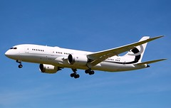 Boeing 787-8 BBJ. N28MS. Jet Aviation Flight Services. (Themarcogoon49) Tags: switzerland airport aircraft landing boeing planespotting bizjet b787 bbj gva cointrin dreamliner avgeek ebace2016