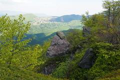 fák és sziklák / trees and rocks (debreczeniemoke) Tags: rock spring peak hike tavasz gutin túra feketehegy szikla csúcs poianaboului mogoşa gutinhegység munţiigutâi ökörmező munţiigutin olympusem5 gutinmountains
