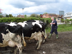 Farmwork down Stapleford Road Trowell -  April 2010 (Lenton Sands) Tags: