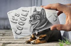 Pencil Vs Camera - 65 (Ben Heine) Tags: portrait dog chien pet cute art smile animal ink puppy fun happy photography crazy scary spain friend hand drawing finger main creative happiness hond dessin hund ami laugh littleman series calligraphy sourire  bonheur pes rire  aprilfool heureux kpek quickie whitepaper   itscool canislupusfamiliaris uo cine  foolday haushund domc benheine mbwa kik piesdomowy apriljoke hn pesdomci pencilvscamera  hadupan