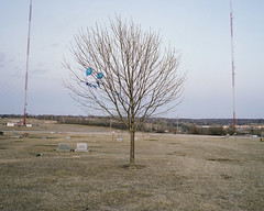(williamhess) Tags: blue tree graveyard mediumformat photography nebraska stuck pentax balloon lone omaha 220 broadcasttower