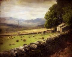 Cumbrian Countryside (vesna1962) Tags: england mountains nature landscape countryside scenery barns lakedistrict cumbria fields derwentwater keswick drystonewall threlkeld theworldwelivein memoriesbook magicunicornverybest magicunicornmasterpiece