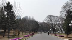 CIMG8768 (Comrade Anatolii) Tags: northkorea pyongyang   pjngjang