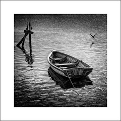 t r a n q u i l i t y (Colin_Bates) Tags: old bw white bird boat tranquility row frame series moored clinker