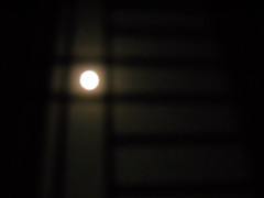 DSCN4739 (Shaer Ahmed) Tags: moon fullmoon moonlitnight moonthroughthewindow moonandthegrill