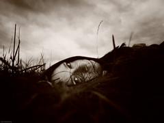051011 (Nini Baseema) Tags: selfportrait 365 2011 oneselfportraitaday ninibaseema