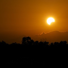 Solar Eclipse Houston Texas (dkphoto7) Tags: nikon texas houston annular 2549faves d7000 solareclipsemay2012