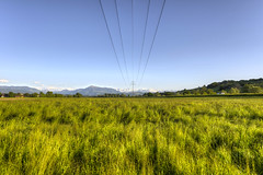 Power lines (Daniel J. Mueller) Tags: trees mountains grass lines landscape schweiz switzerland high power valley aargau hdr canton reusstal voltage reuss kanton 7xp d800e