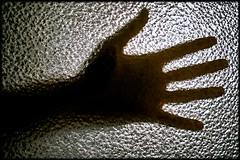 (Flaxe) Tags: hand sigma glas foveon dp2x