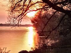 Spring-Sunset