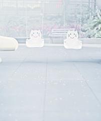 img561 (Wayne Cheng) Tags: 120 film pentax takumar kodak taiwan 120film 400 taipei portra 67ii 105mm f24 中片幅 兒童公園