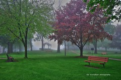 st catharines (Rex Montalban Photography) Tags: stcatharines montebellopark rexmontalbanphotography
