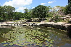 Xlakah (linkogecko) Tags: archaeology mxico mexico site maya yucatan yucatn mayan mexique archaeological 2009 zona mayas messico arqueologa dzibilchaltun arqueologica mayans arqueolgica